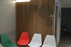 1_clinique-irg-mur-claire-voie-00
