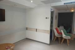 1_clinique-irg-mur-claire-voie-17