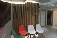 1_clinique-irg-mur-claire-voie-20